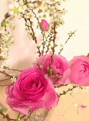 20140221flower.jpg