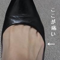 ashi4.jpg