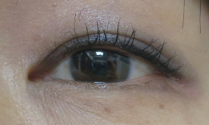 eyeline20150709.jpg
