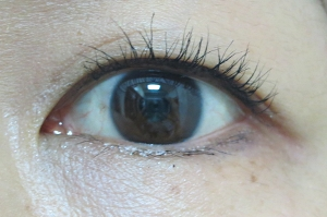 eyeline201507105.jpg