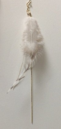 featherp1.jpg