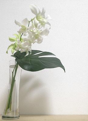 flower201408152.jpg