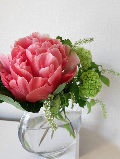flower20150518.jpg