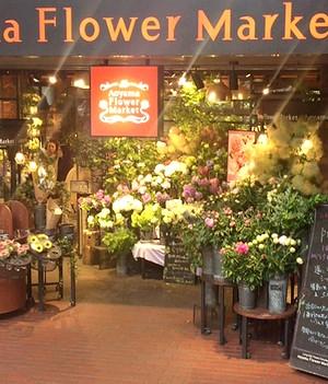 flower201506091.jpg