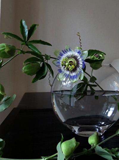 flower201506251.jpg