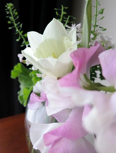 flower201601163.jpg