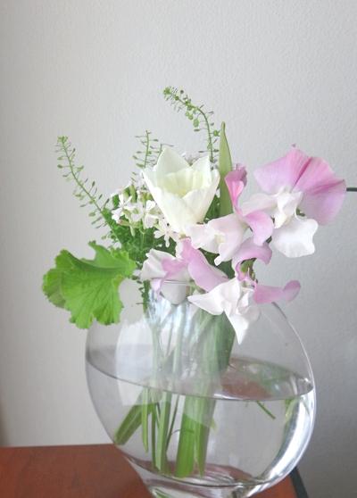 flower201601164.jpg
