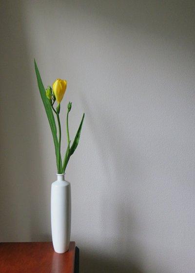 flower201602144.jpg