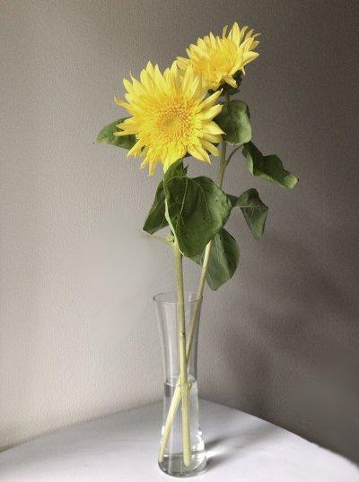 flower20170718.jpg