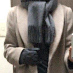 grey_glove2.jpg