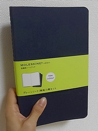 moleskin1.jpg