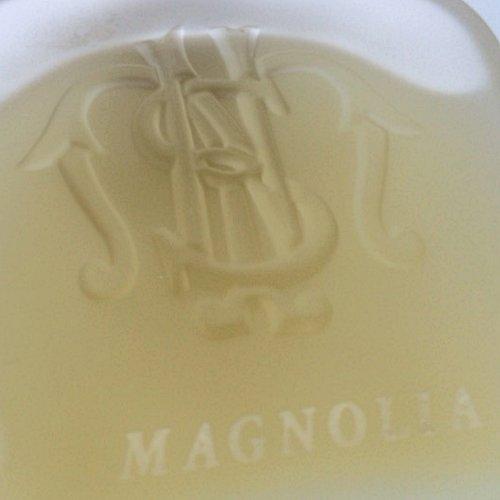 smarianovella_magnolia3.jpg