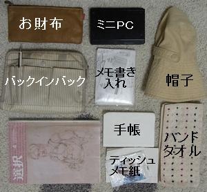 tsukinbag4.jpg